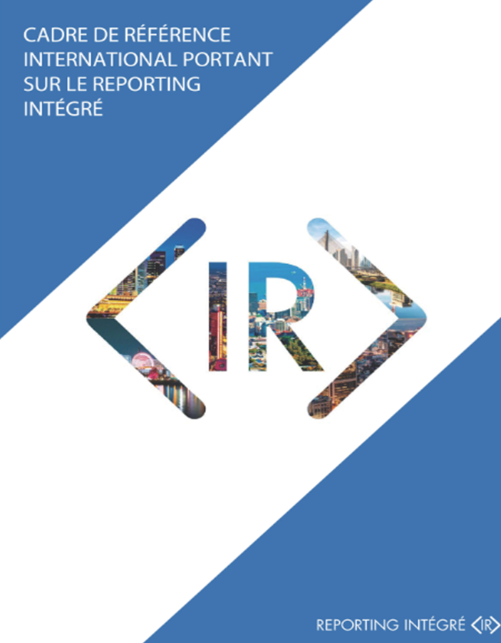 L'International Integrated Reporting Council (IIRC)